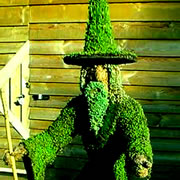 wizard made of shrubbery
