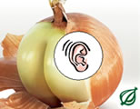 Onion audio logo; click to go to audio page at external site; opens in new window