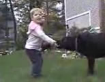 little boy playing with black lab dog; click to go to video page