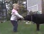 green lawn care video link; thumb of little boy playing with black lab